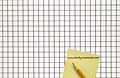 2 x 2 to 4 x 4 Stainless Steel Welded Wire Mesh (2304.041WD) - 2